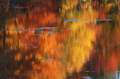 #753  The many warm-toned hues of autumn reflected in a pond.