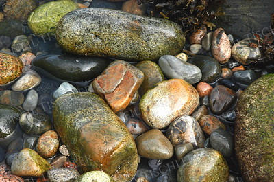 #906  Seashore stones at Acadia National Park, Maine.
