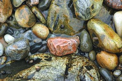 #388  Seashore stones at Acadia National Park, Maine.