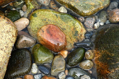 #917  Seashore stones at Acadia National Park, Maine.