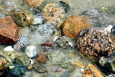 #1474  Seashore stones, Chatham, MA