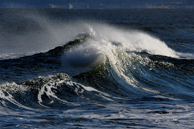 #1587  Windswept waves  on a windy day at Plum Island, Newburyport, MA   January 1, 2020