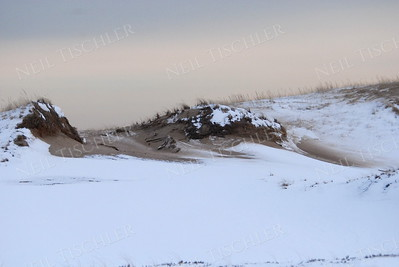 #797  A late winter afternoon among the sand dunes at Plum Island, a barrier island off Newburyport, Massachusetts