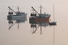 #835  Moored trawlers