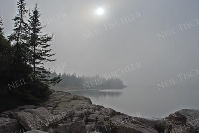 #511  Fogbound Schoodic Point, Acadia, Maine