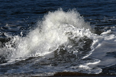 #1585  Frothy wave  on a windy day at Plum Island, Newburyport, MA   January 1, 2020