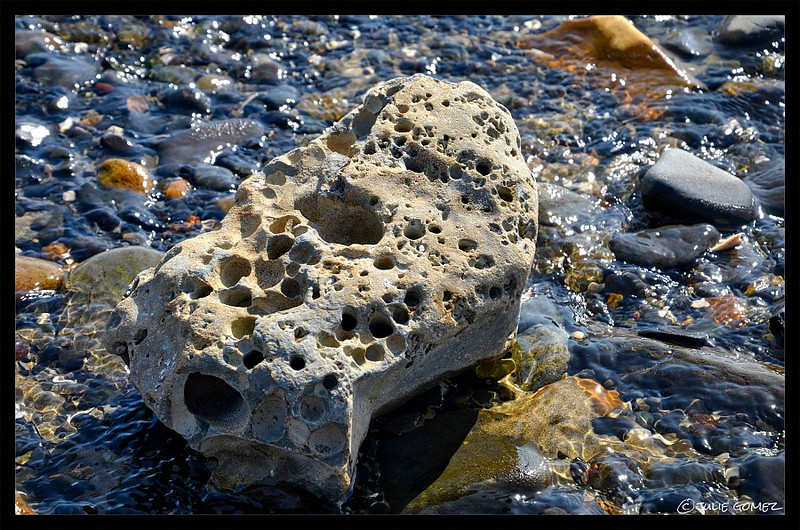 Honeycomb-Weathered Rock