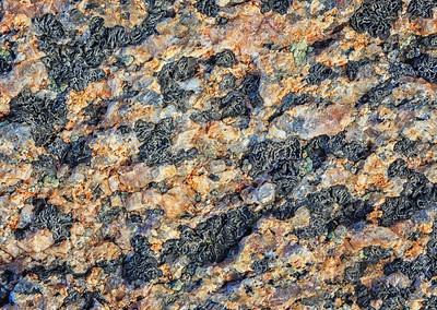 Granite & Lichen detail