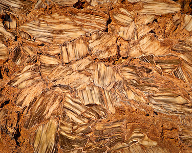 """Glass Mountain gypsum dome Note these selente crystals are 6"""" to 9"""" long Lower Cathedral Valley, Capitol Reef, Utah"""
