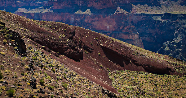 Cinder cone spilling into the Grand Canyon - Lava Falls trail