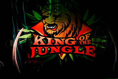 Rockstar- King of the Jungle