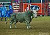 Mesquite, TX Stock Images