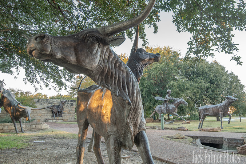 Frisco, TX  Cattle Drive (north to south route) Historic Tribute.