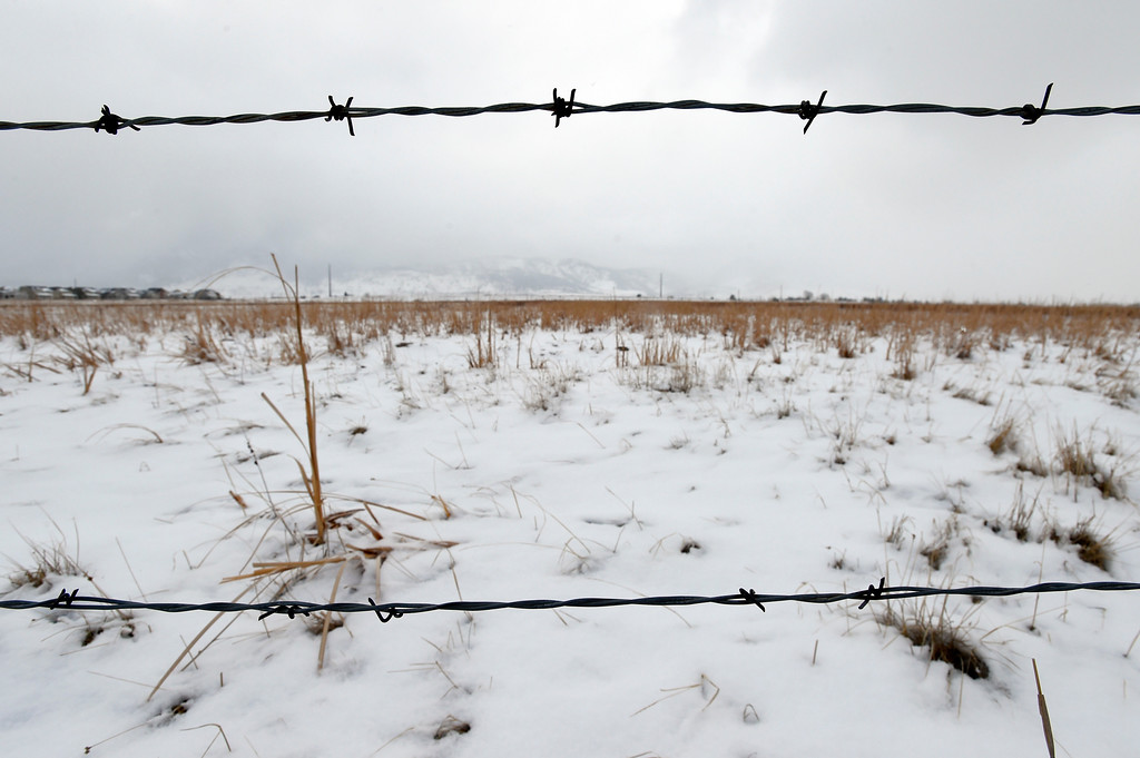 . An area of the Rocky Flats Wildlife Refuge on Friday. Jeremy Papasso/ Staff Photographer/ Feb. 24, 2017