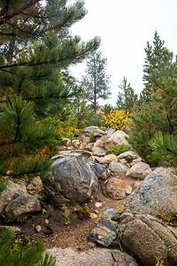 """Rocky Mountain Terrain"""