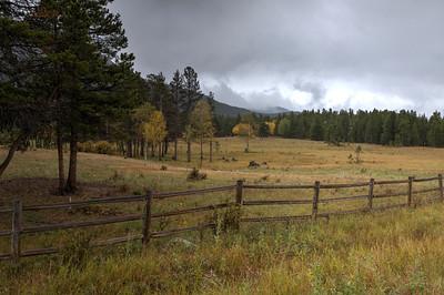"""""""Rocky Mountain Meadows"""""""