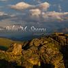 Rocky Tundra View