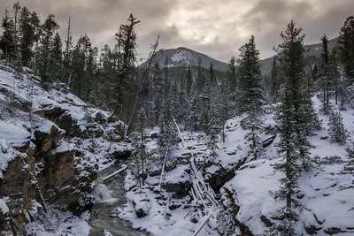 Adams Falls, Rocky Mountain National Park