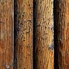 Old Barn Wood _MG_5203