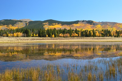 Reflections of fall colors at Kenosha Pass.
