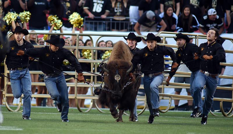 Colorado  Colorado State NCAA Football