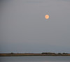 Moon over Marshes
