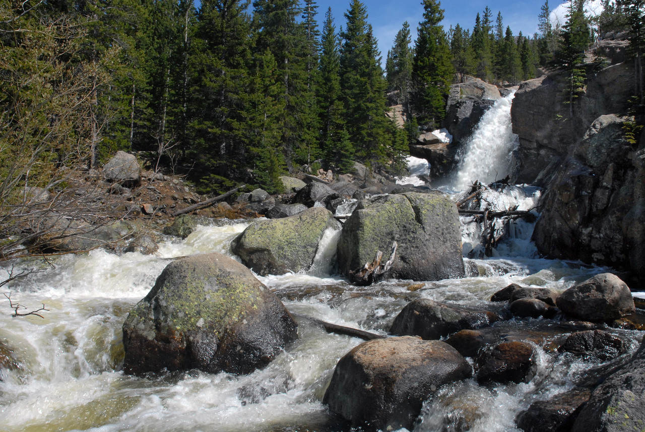 Wild waters rage at Alberta Falls in the spring.