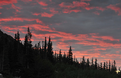Rosy Finger Dawn glows over a lodge pole pine forest near Lost Lake.