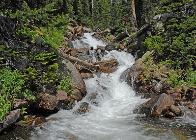 Deep into Wild Basin, and well off the maintained trials, lies one of Rocky's seldom seen treasures Mertensia Falls.  The falls can be heard from the Thunder Lake trail but not seen, unless one scrambles through the thick brush and then crosses a rushing river.  However,the rewards for this effort are not to be denied.