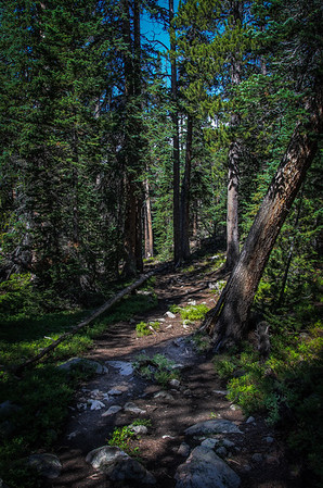 A Hiker's Paradise