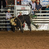 101WildWestPRCA Fri BULLS 1stSection-27