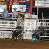 101WildWestPRCA Fri BULLS 1stSection-6