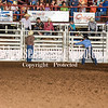 101WildWestPRCA Fri Bulls 2ndSection-21