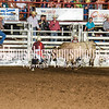 101WildWestPRCA Fri Bulls 2ndSection-28