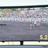 101WildWestPRCA Sat SteerWrestling-12
