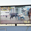101WildWestPRCA Sat SteerWrestling-34