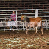 101WildWestPRCA Slack TeamRoping-1