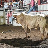 101WildWestPRCA Thur Bulls2ndSection-32