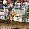 101WildWestPRCA Thur Bulls2ndSection-29