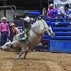 Cowboys&Angels2018 LG Bulls-51