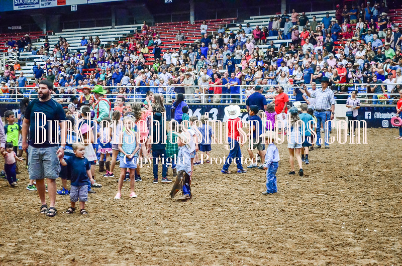 Cowboys&Angels2018 CalfScramble-13
