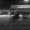 HI LO RanchRodeo 2018 Sorting-31