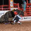 JessA&MikeH MemorialPRCA 4 20 18 Bulls-18