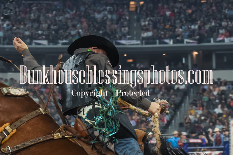 THEAMERICAN2018 LG SaddleBroncs-73