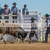 TJHRA Hereford 3 10 18 Bulls-57