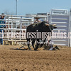 TJHRA Hereford 3 10 18 Bulls-32