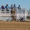 TJHRA Hereford 3 10 18 Bulls-51