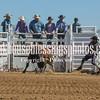TJHRA Hereford 3 10 18 Bulls-55