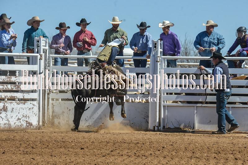 TJHRA Hereford 3 10 18 Bulls-10