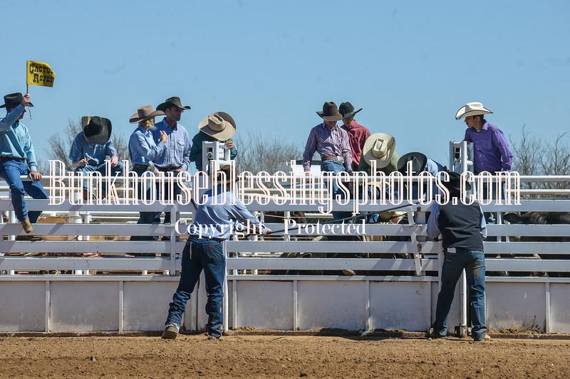TJHRA Hereford 3 10 18 Bulls-6